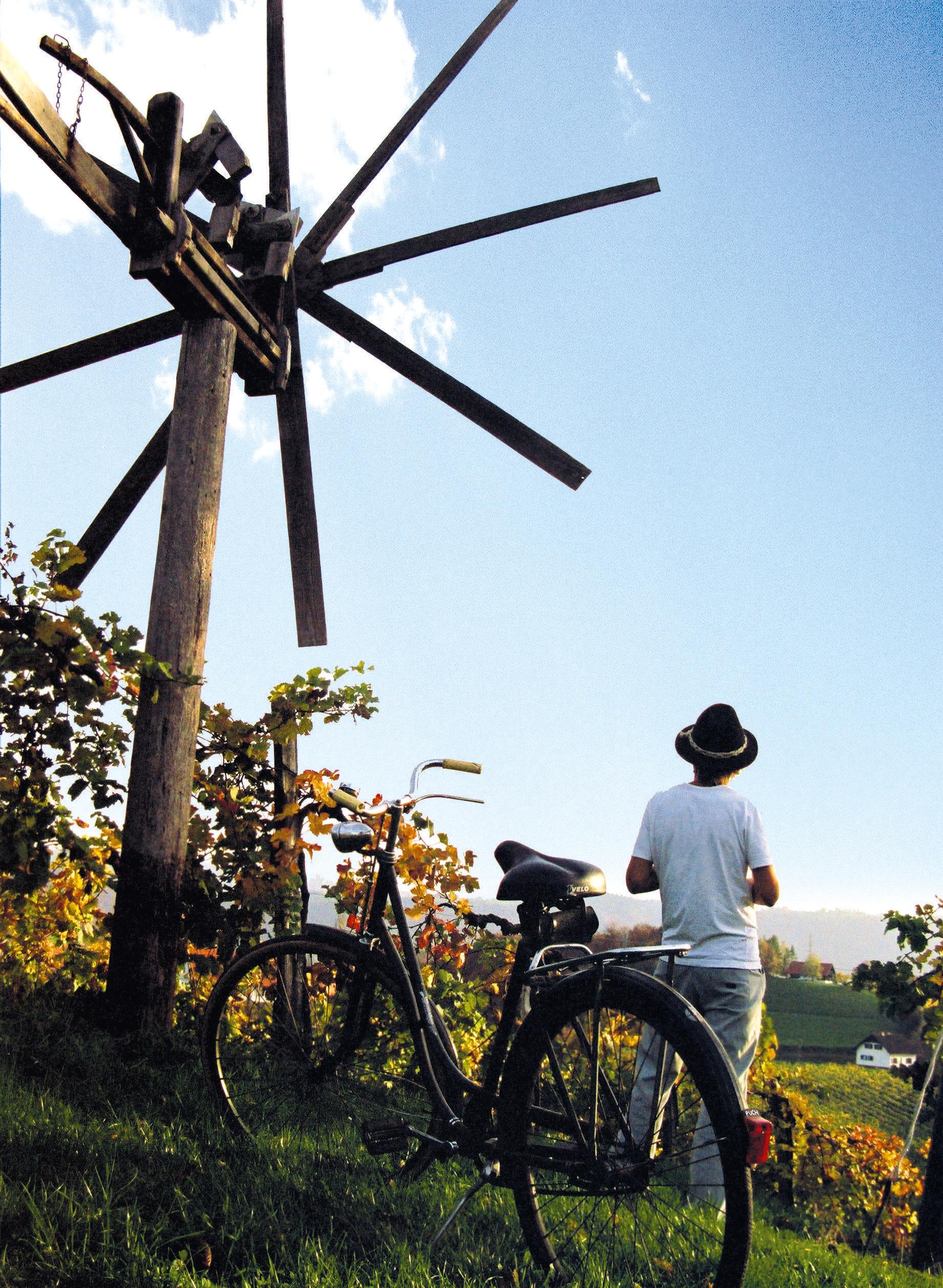 radfahren-im-weinland--steiermark-tourismus-ikarus-cc