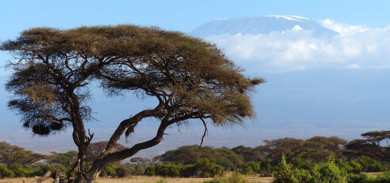Kenia, Tanzania, Lamu i Zanzibar – 101 cudów Afryki