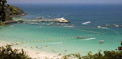 Ostrzeżenie przed meduzami w Tajlandii, co robić w przypadku użądlenia
